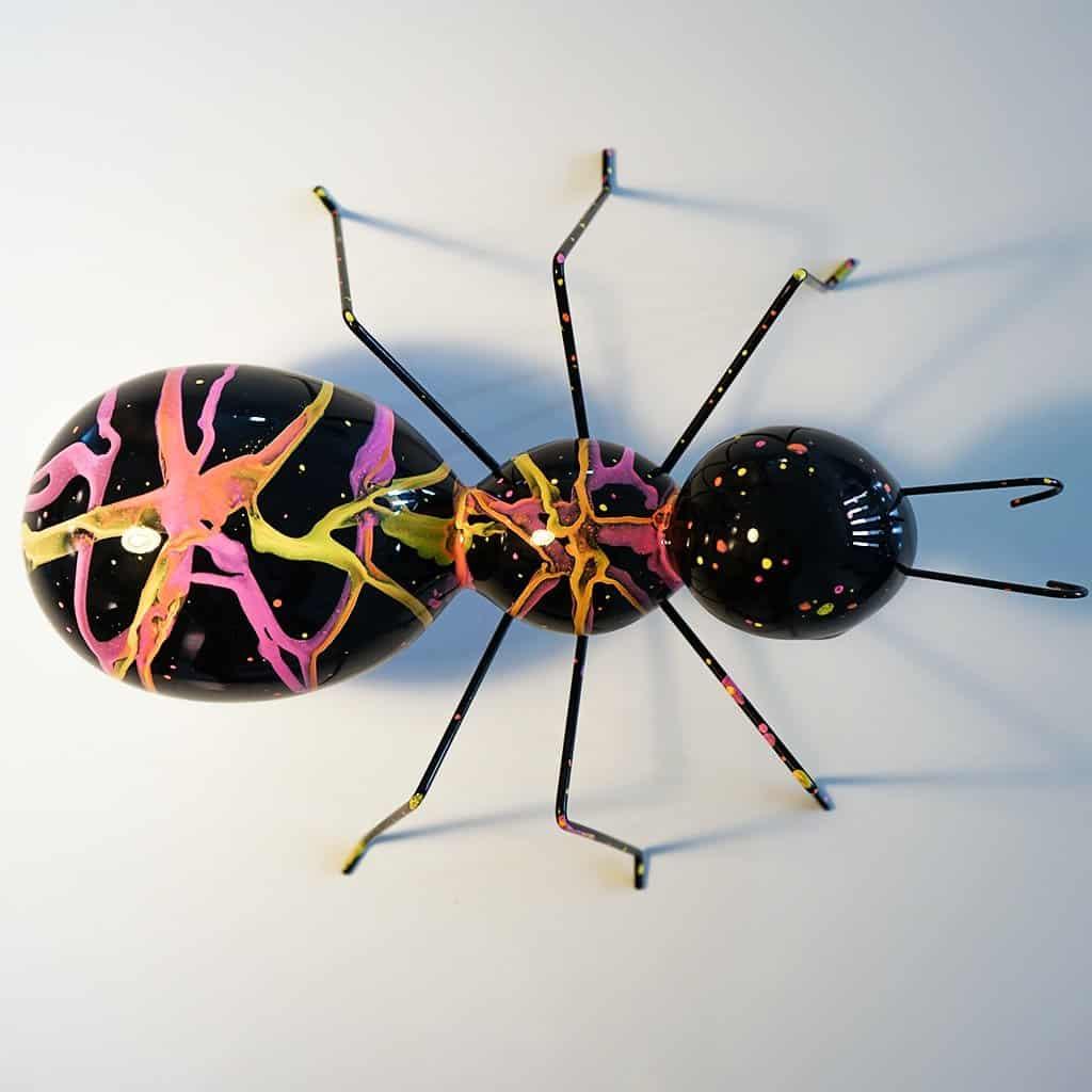 La fourmi rose 200€ - 02